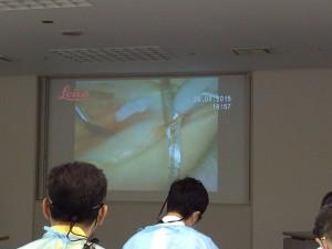 歯周外科の研修会の様子